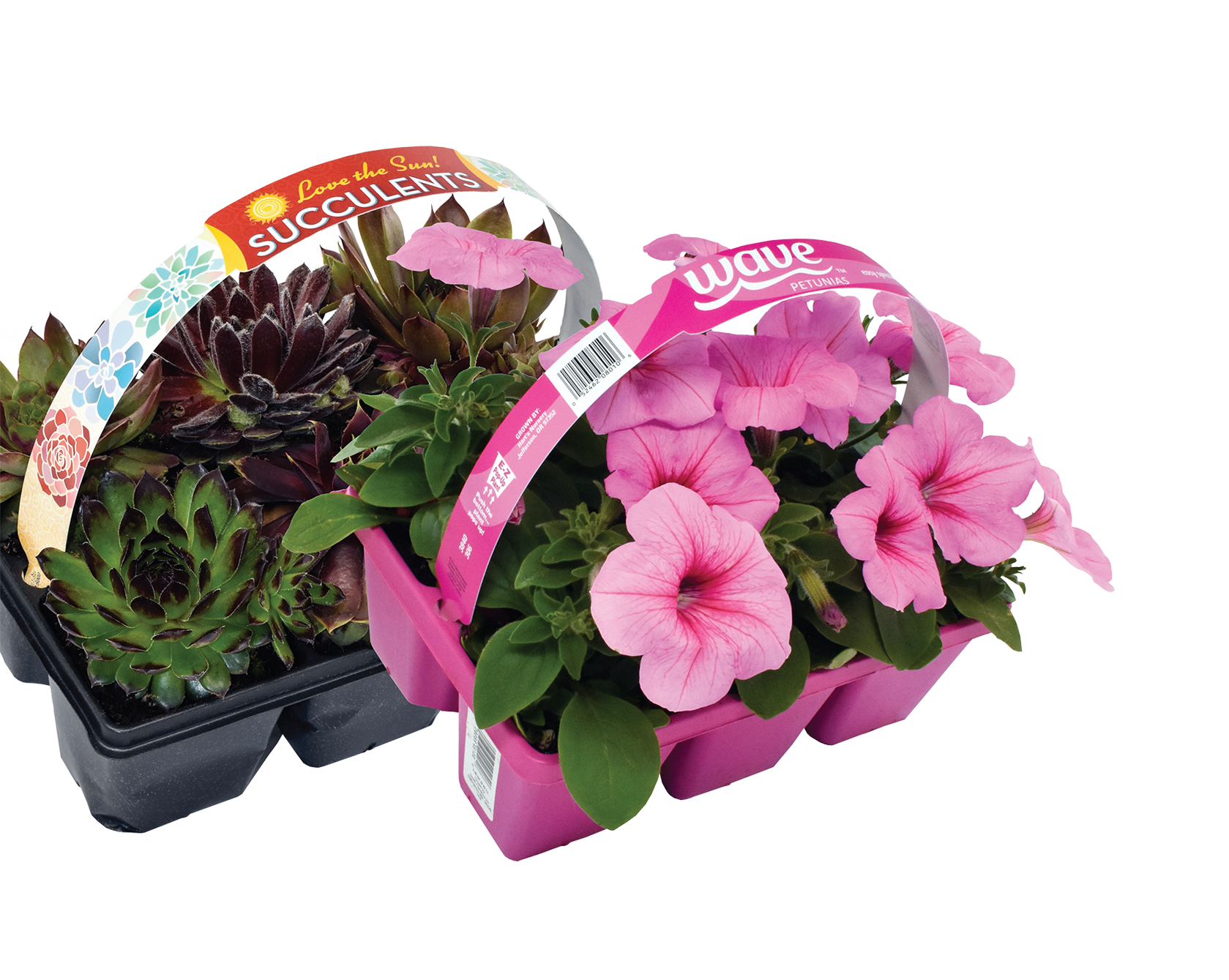Macore- Stakes, Tags & Labels for the Horticulture Industry